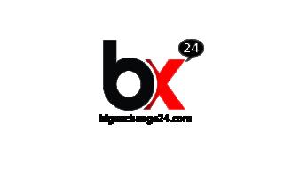 Bigexchange24